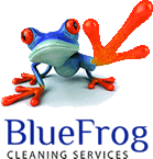 BlueFrog Cleaning Services